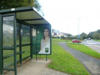 2104-4 Panel 3 Adj Cole Lane  Exeter Road Ivybridge